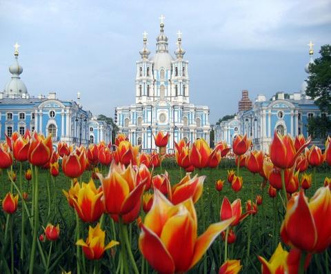 Восемь миллионов цветов укра…