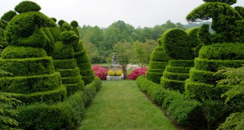 Ладью топиар-сад (Ladew Topiary Gardens) – самый-самый сад Америки