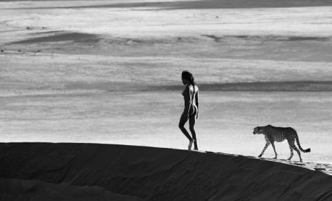 Дикие встречи фотографа Дэвида Ярроу