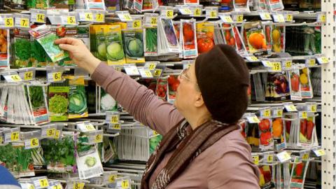 Иду я в магазин семян со списком будущих посадок...