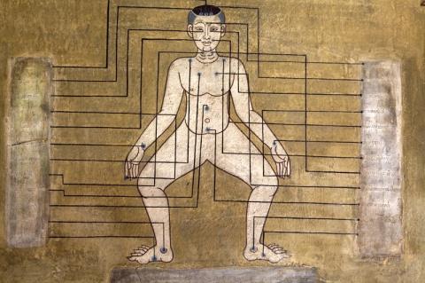 Карта тела: Как на уровне те…