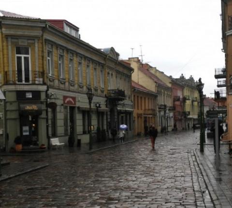 Эксперт: Литву ждут демографические пустыни