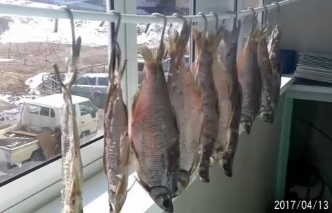 Вяленая рыба, как завялить не крупную рыбу, хороший способ вялить рыбу в домашних условиях.