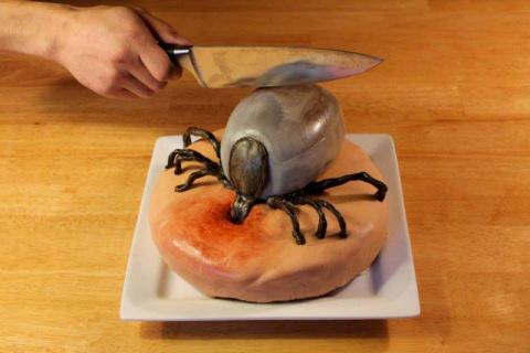 Ужасающе реалистичные торты,…