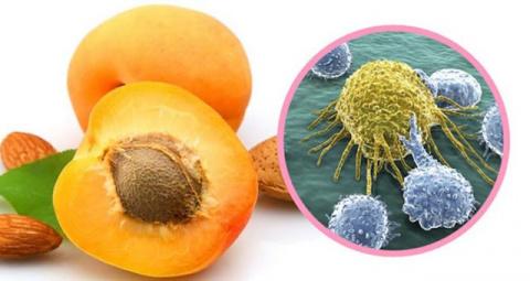 Что врачи никогда не скажут вам — эти семена убивают раковые клетки без побочных эффектов!