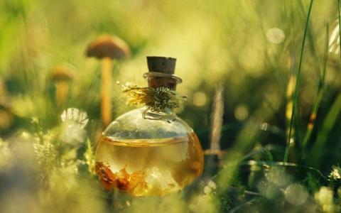 Касторовое масло для вашей красоты