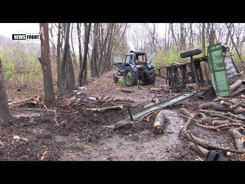 [21+] В ЛНР трактор подорвался на мине: один человек погиб, еще пятеро ранено