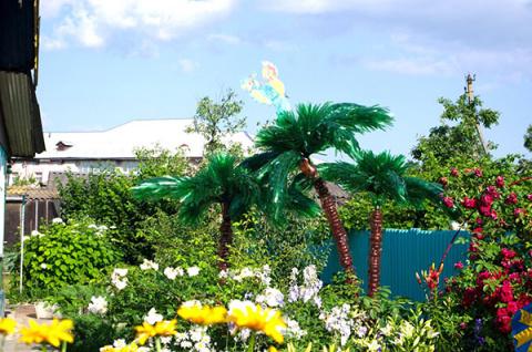 Вечнозеленое дерево — пальма…