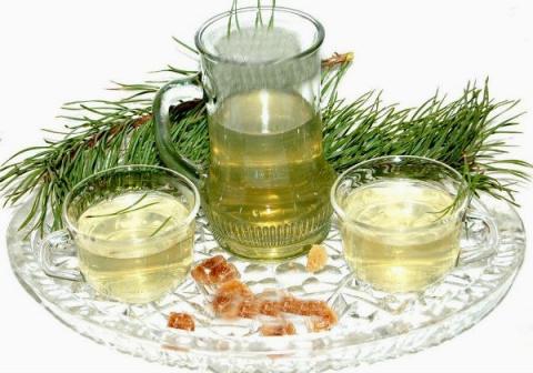 Хвойный чай - природный лекарь