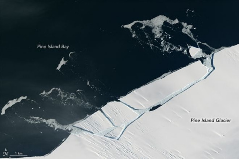 От антарктического ледника о…