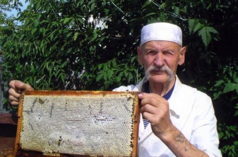 Пчелиные хитрости. Как выбрать правильный мёд - советы эксперта