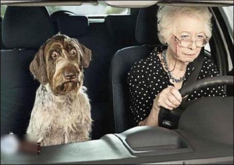 Как общаться с пожилыми роди…
