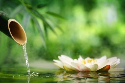 Мысли – это главный источник вашего хорошего настроения