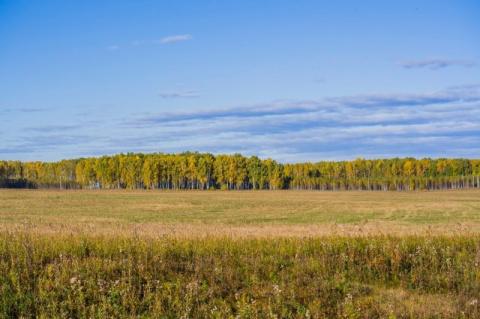 Минутка осеннего Урала (12 фото)
