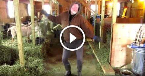 50-летний фермер станцевал для коз и стал новой звездой Интернета