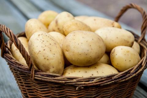 9 магических свойств картофе…