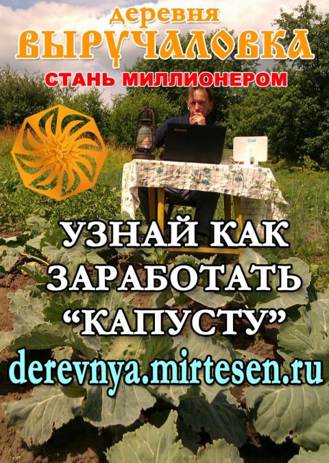 Деревня Выручаловка, проект 1000rub.com