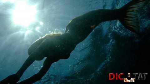 Это и правда сенсация: живую русалку сняли на видео