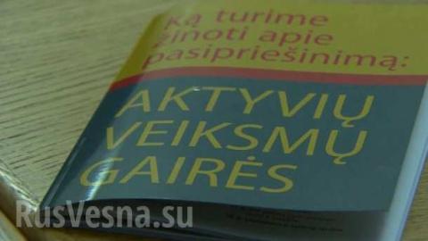 Литва запугивает детей «российской оккупацией», — мнение