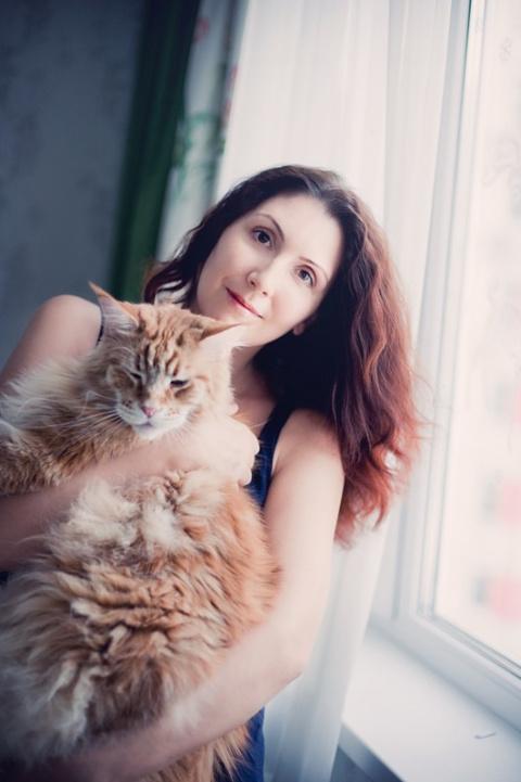 Веселая история о дрессуре котиков