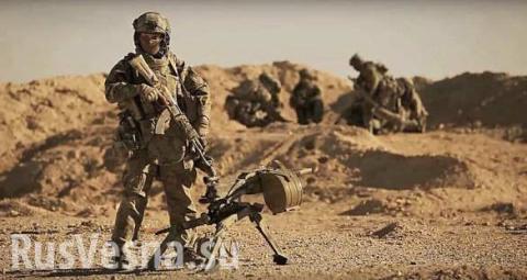 Спецназ России уничтожает смертников ИГИЛ в Пальмире (ВИДЕО)