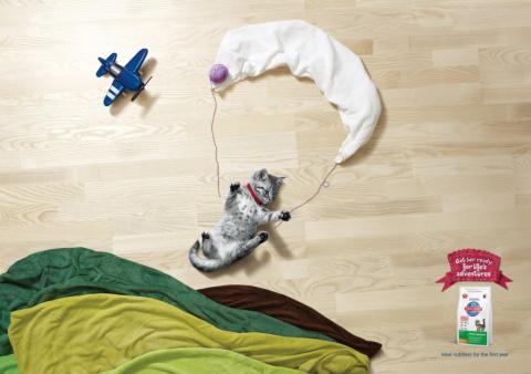 Мимими реклама для кошечек и собачек