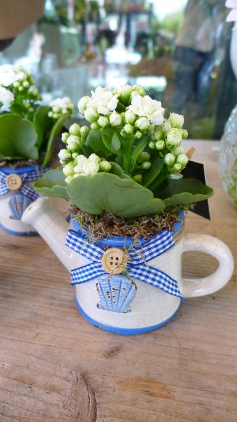 Цветочный фестиваль в Голландии