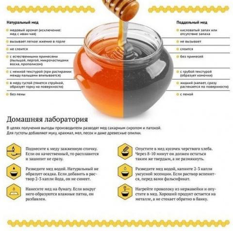 Как отличить натуральный мёд…