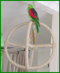 Игровые для попугайчиков