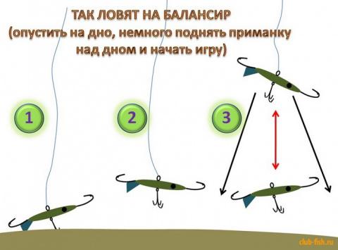 Балансир - простые правила ловли