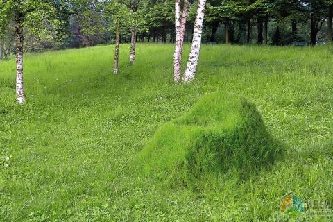 Зеленое кресло - живая садов…