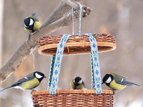 Кормушка для птиц - интересные и простые идеи
