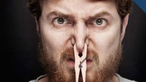 Почему у нас именно две ноздри?