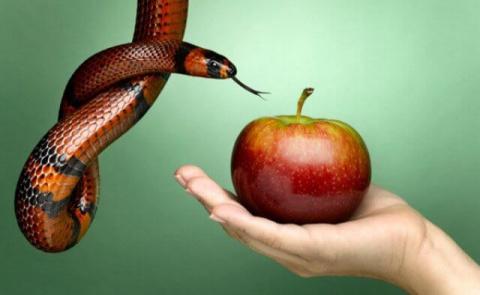 Гороскоп грехов: какие порок…