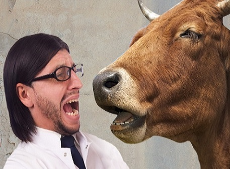 Дает корова молоко – или почему нам не нужны академики-экономисты