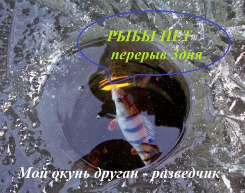 рыбалка по приметам природы
