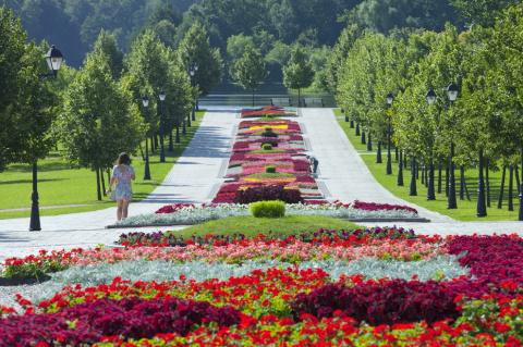 Лето в Царицыно