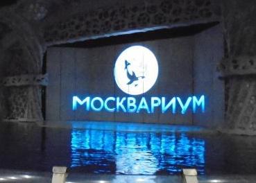 Московские похождения. Москвариум.