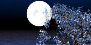 Полная Луна хороша для кошелька. Денежная астрология