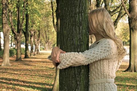 Дендротерапия, или лечение деревьями