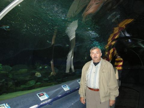 Сергей Перченко