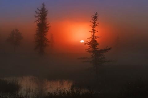 Теплые И Яркие Фото, Доказыв…