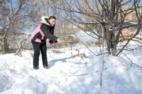 Работы по снегу для богатого урожая