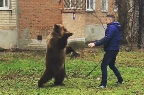 Полицейские в Таганроге ищут…