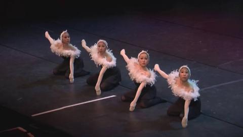 Необычный танец маленьких лебедей