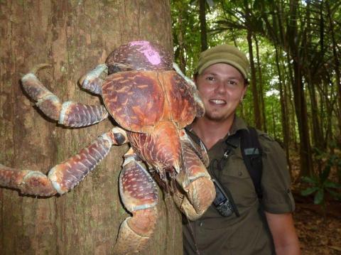 """""""Фууу"""", - скажете вы, когда увидите 15 самых отвратительных животных в мире"""