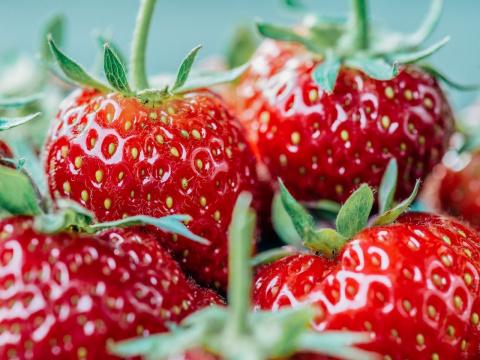 14 продуктов, которые можно есть в любом количестве и не поправляться