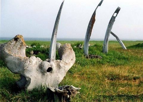 Китовая аллея – самое древнее капище