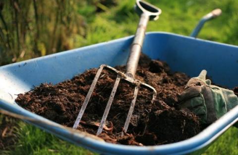 Как из опавшей листвы сделать ценное удобрение