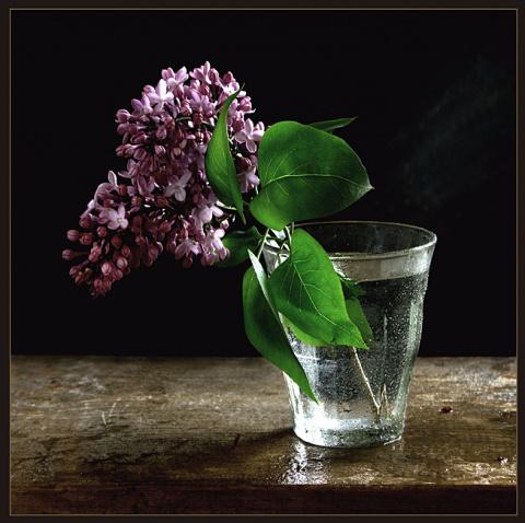 Притча о стакане с водой